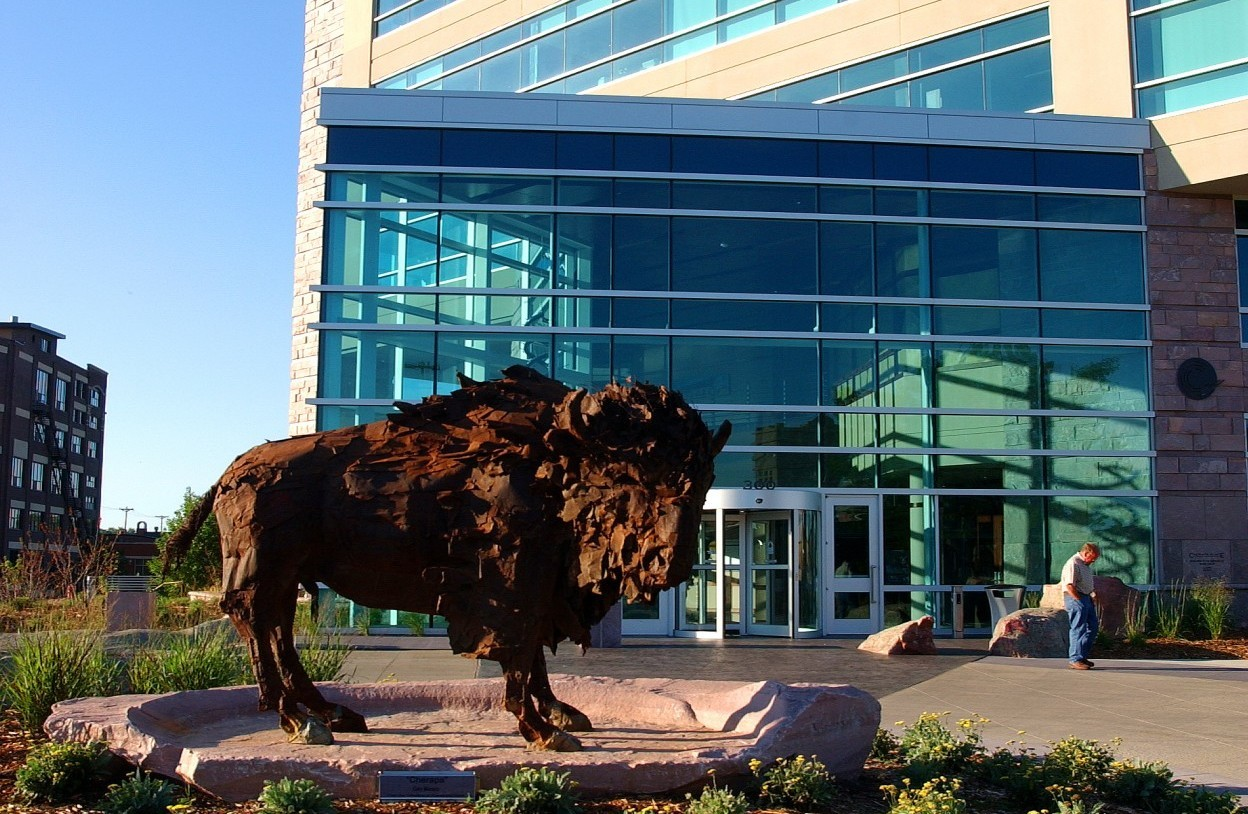 Building with buffalo